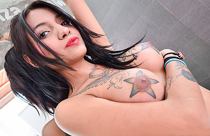 Dangerous latina babe with hard tattoed tits sucks a big cock